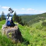 Entschleunigung - Landschaft im Thüringer Wald © Henry Czauderna - Fotolia.com
